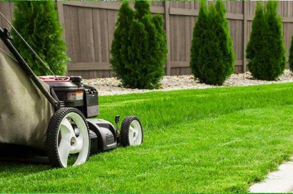 Quand tondre son jardinà Apprieu