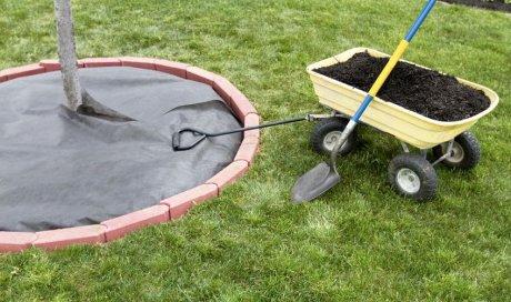 Entreprise spécialisée dans la création de massifs avec paillage dans un jardin privé à Châbons