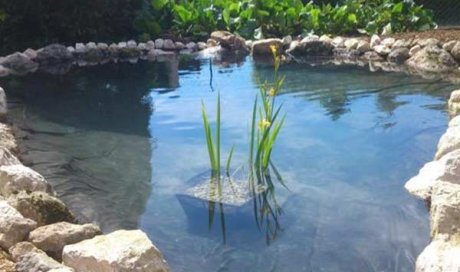 Création de bassin aquatique à Apprieu