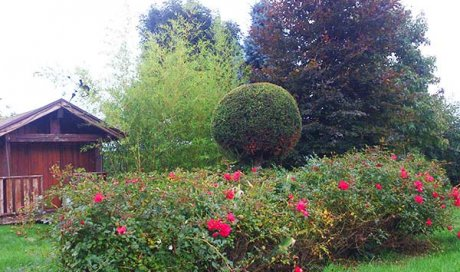 Emmanuel Fillardet entretien de jardin à Apprieu
