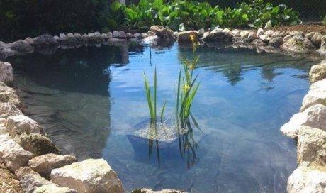 Création de bassin à Apprieu